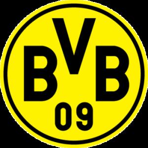 Borussia_Dortmund_display_image