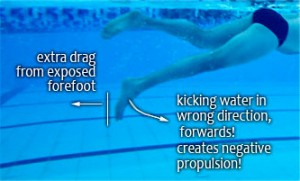 dorsiflexedswimmer